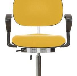 Darbo kėdė: WS 1310